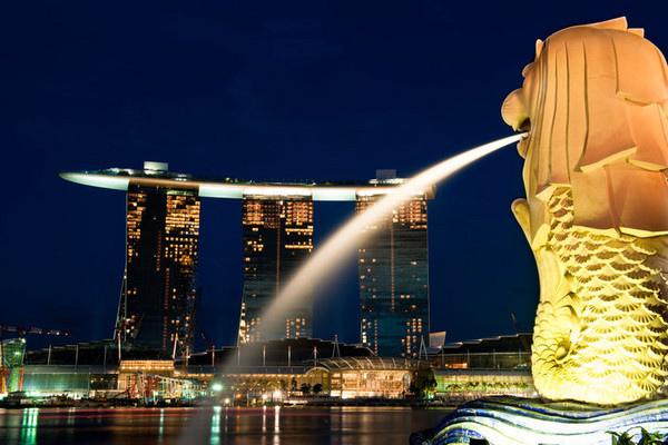新加坡花场